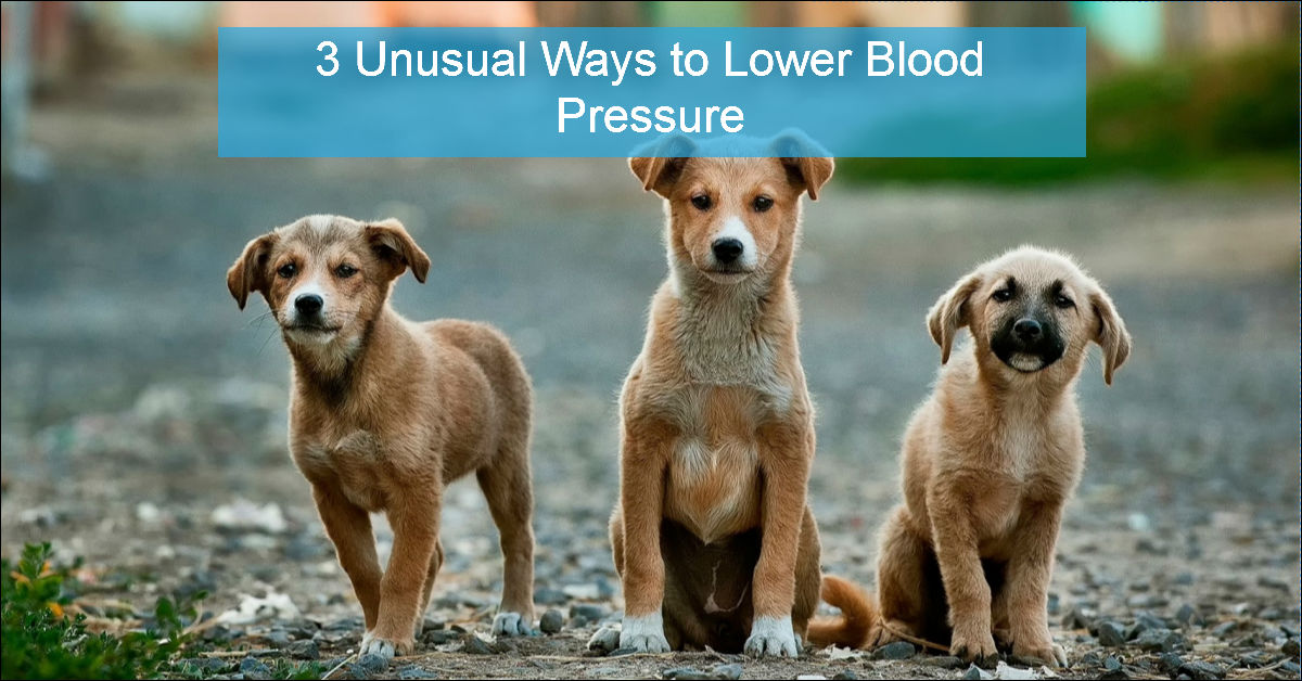 Natural Ways To Lower Your Blood Pressure Immediately